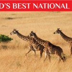 World's Most Exotic National Parks